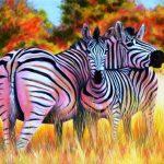 Lydia Mack  <b> Skukuza Zebras </b> oils on canvas,  20 x 30